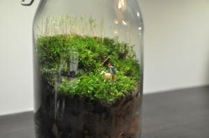 bottle_garden